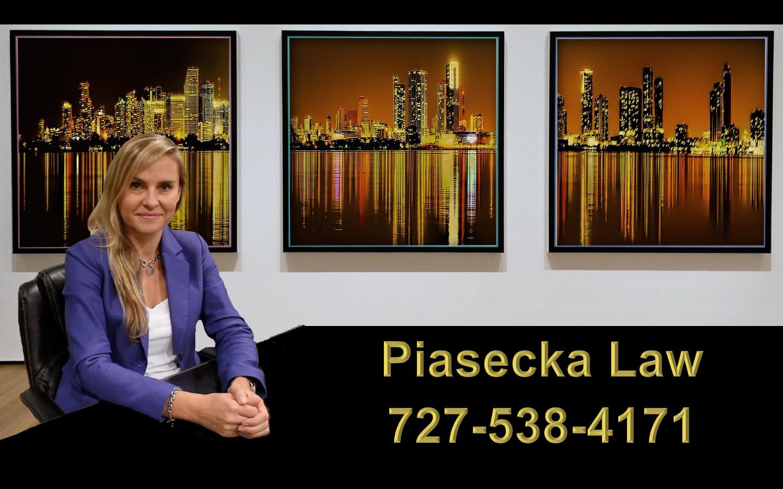 """Agnieszka """"Aga"""" Piasecka Polski Prawnik Adwokat Miami Floryda"""